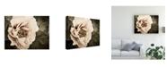 "Trademark Global Rachel Perry Golden Era Peony I Canvas Art - 20"" x 25"""