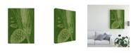 "Trademark Global Vision Studio Modern Pine I Canvas Art - 20"" x 25"""