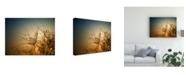 "Trademark Global Dimitar Lazarov Tender is the Night Canvas Art - 20"" x 25"""