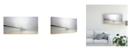 "Trademark Global Jorge Feteira Soft Bridge Canvas Art - 37"" x 49"""