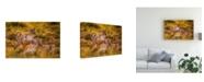 """Trademark Global Mohammed Alnaser Charm Canvas Art - 20"""" x 25"""""""