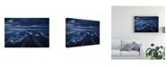 """Trademark Global Juan Pablo De Wild Ice Canvas Art - 20"""" x 25"""""""