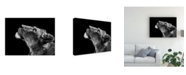 "Trademark Global Christian Meermann Looking Up Monochrome Canvas Art - 15"" x 20"""