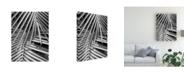 "Trademark Global Monte Nagler Cycad Michigan Canvas Art - 15"" x 20"""
