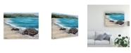 "Trademark Global Patrick Sullivan 2 Turtles Canvas Art - 36.5"" x 48"""