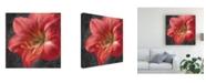 "Trademark Global Danhui Nai Vivid Floral III Crop Canvas Art - 36.5"" x 48"""