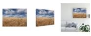 "Trademark Global PH Burchett Farm and Field II Canvas Art - 15.5"" x 21"""