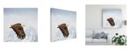 "Trademark Global PH Burchett Majestic Eagle I Canvas Art - 15.5"" x 21"""