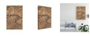 "Trademark Global Chariklia Zarris Clay Journey I Canvas Art - 15.5"" x 21"""
