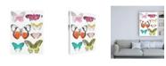 """Trademark Global June Erica Vess Chromatic Butterflies I Canvas Art - 15.5"""" x 21"""""""