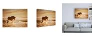 """Trademark Global PH Burchett Sunkissed Horses V Canvas Art - 15.5"""" x 21"""""""