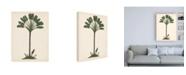 "Trademark Global Melissa Wang Palm Tree Study I Canvas Art - 15.5"" x 21"""