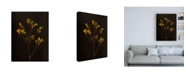 "Trademark Global Renee W. Stramel Dark & Dreamy V Canvas Art - 15.5"" x 21"""