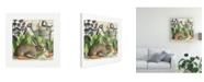 "Trademark Global Wild Apple Portfolio Garden Rabbit I Canvas Art - 20"" x 25"""