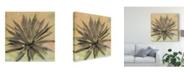 "Trademark Global Naomi Mccavitt Desert Dreams I Canvas Art - 20"" x 25"""