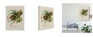 "Trademark Global Vision Studio Elegant Tropicals V Canvas Art - 37"" x 49"""