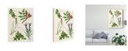 "Trademark Global Melissa Wang Sweet Assemblage II Canvas Art - 37"" x 49"""