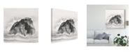 """Trademark Global Chris Paschke Solitary Rock Canvas Art - 15"""" x 20"""""""