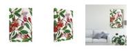 "Trademark Global Melissa Wang Malus Melliana I Canvas Art - 37"" x 49"""