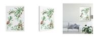 """Trademark Global Melissa Wang Asian Flower Array II Canvas Art - 20"""" x 25"""""""