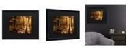 "Trademark Global Philippe Sainte-Laudy Morning Light Matted Framed Art - 15"" x 20"""