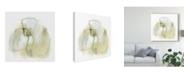 "Trademark Global June Erica Vess Intermezzo III Canvas Art - 20"" x 25"""