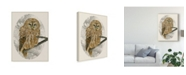 "Trademark Global Melissa Wang Barred Owl I Canvas Art - 20"" x 25"""