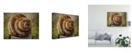 "Trademark Global Patrick Lamontagne Beaver Totem Canvas Art - 37"" x 49"""