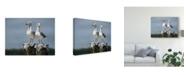 "Trademark Global Patrick Lamontagne Ukee Locals Canvas Art - 15"" x 20"""