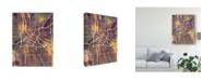 "Trademark Global Michael Tompsett Minneapolis Minnesota City Map II Canvas Art - 15"" x 20"""