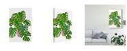 "Trademark Global Melissa Wang Potted Jungle I Canvas Art - 20"" x 25"""