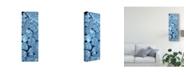 "Trademark Global Melissa Wang Blue Peonies I Canvas Art - 37"" x 49"""