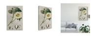 """Trademark Global Pancrace Bessa Ua Ch Tropical Varieties II Canvas Art - 20"""" x 25"""""""