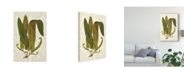 "Trademark Global Vision Studio Garden Ferns I Canvas Art - 20"" x 25"""