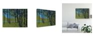 "Trademark Global Paul Bailey Forest Brook Canvas Art - 37"" x 49"""