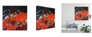 "Trademark Global Erin Mcgee Ferrell Abstract Lobster IV Canvas Art - 15"" x 20"""