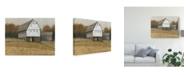 "Trademark Global Tim Otoole White Barn View II Canvas Art - 15"" x 20"""