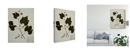 "Trademark Global Vision Studio Pressed Leaves on Linen III Canvas Art - 20"" x 25"""