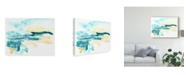 """Trademark Global June Erica Vess Liquid Lakebed II Canvas Art - 15"""" x 20"""""""