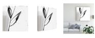 "Trademark Global Jennifer Goldberger Ua Ch Blush Flower Splash IX Canvas Art - 20"" x 25"""