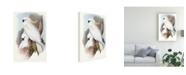 "Trademark Global John Gould Pastel Parrots V Canvas Art - 20"" x 25"""