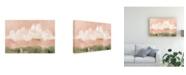 "Trademark Global Emma Scarvey Pink Haze Sunset II Canvas Art - 20"" x 25"""