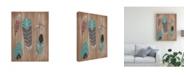 "Trademark Global June Erica Vess Driftwood Feathers I Canvas Art - 20"" x 25"""