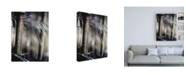 """Trademark Global Incado Leaf IV Canvas Art - 19.5"""" x 26"""""""