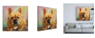 """Trademark Global Jeanette Vertentes Frenchie Painting Canvas Art - 15.5"""" x 21"""""""