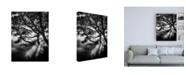 "Trademark Global Design Fabrikken Misty Black Fabrikken Canvas Art - 15.5"" x 21"""