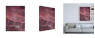 """Trademark Global Design Fabrikken Pink Sky Fabrikken Canvas Art - 15.5"""" x 21"""""""