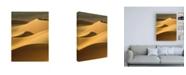 "Trademark Global Design Fabrikken In the Dunes 3 Fabrikken Canvas Art - 36.5"" x 48"""