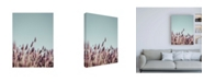 """Trademark Global Design Fabrikken Field Haze Fabrikken Canvas Art - 19.5"""" x 26"""""""