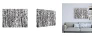 """Trademark Global Roderick Stevens Winter Aspens Birch Canvas Art - 15.5"""" x 21"""""""